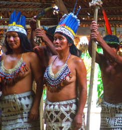 The Ayahuasca Foundation - Indigenous Tribes of the Amazon